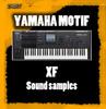 Thumbnail Yamaha motif XF Organs For Kontakt-NKI